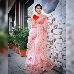 Net Embroidered Saree - FG2700   Pink
