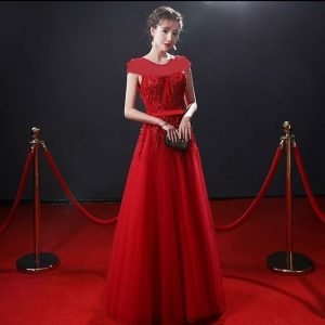Partywear Net Fabric Material - NOW1068 | Red